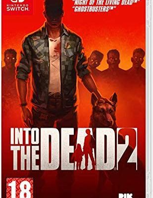 Into the Dead 2 (GRA NINTENDO SWITCH)